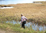 Прошла экологическая акция на особоохраняемой природной территории «Озеро Вероярви» в Токсово (16.05.2009) (© www.toksov.spb.ru)
