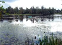 Токсовские депутаты исключили 2,31 Га из состава охраняемой природной территории на озере Вероярви © www.toksov.spb.ru