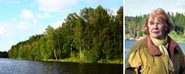 Умерла Инга Петкевич (17.08). Хонка-парк хочет застроить свободные берега озер Тинуксеньярви и Лайдака (03.08)