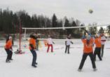 Открытый Рождественский турнир по волейболу на снегу (Токсово, 7 января 2008 г.)