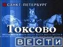 Вести Санкт-Петербург в Токсово