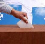 Местные выборы в Токсово (14.09.2014)