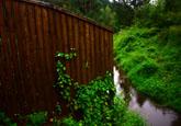 Незаконно захватываются берега токсовских рек