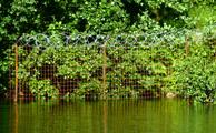 Заборы уходят в воду. Продолжается перекрытие доступа к побережьям озер в Токсово (лето 2010 г.)